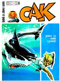 CAK br.06